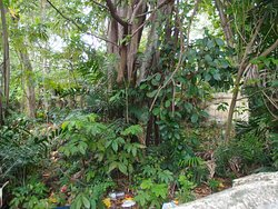 Old Malay and Muslim Cemeteries