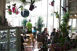 Greencafe at Millbrook Garden Centre