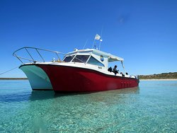 Shark Bay Dive & Marine Safaris