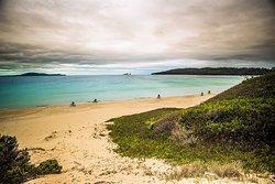 Tasmanian E-Bike Adventures