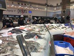 Behind the Scenes at Sydney Fish Market