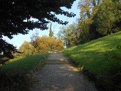 Parco Pubblico Villa Genero