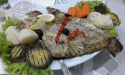 Bom Peixe