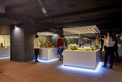 Museum Miniland