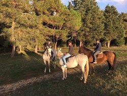 Horse Riding Zadar