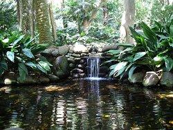 Jardin Botanico Historico La Concepcion