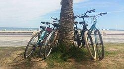 Alicante Rental Bikes