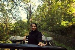 on the safari tour ...