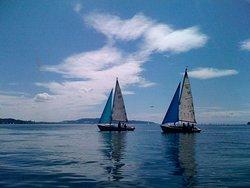 Segelschule – Yachtcharter – Uberlingen  Raschewski