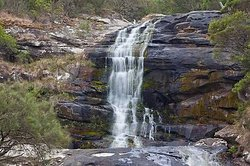 Carisbrook Waterfall