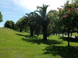 Parque Abusu