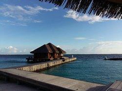 Dive Blue Maldives