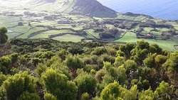 Mainland Portugal and Azores