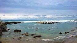 富山漁業資源保育區