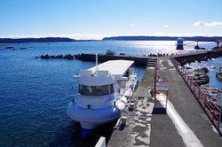 海中観光船ステラマリス