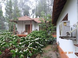 """""""The best place to stay in Madikeri """""""