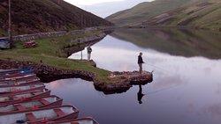 Edinburgh Falconry & Fishing