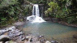 Waiau Falls Walk
