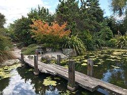 Miyazu Japanese Garden