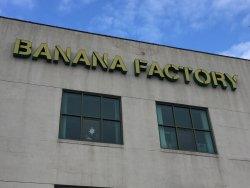 ‪The Banana Factory‬