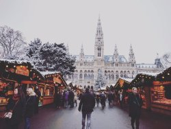 Christmas Market on Rathausplatz