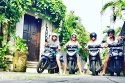 Saba Bali Trans - Day Tours