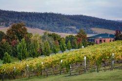 De Bortoli Winery