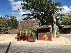 Ras Rody's Roadside Organic