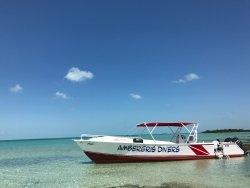 Ambergris Divers