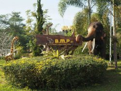 Elephant Care Project - BMP Farm House