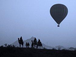 Shankar Camel Safari
