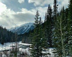 Goat Creek Trail