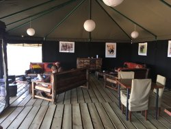 Awesome Glamping