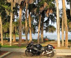 Palm Island Park