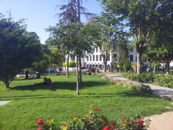 Kultur Park