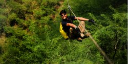 Flying Fox Kikar