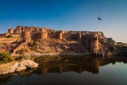 Den flyvende rev i Jodhpur