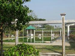 United 21 Grassland Resorts