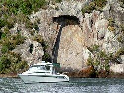 Fish Taupo