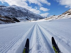 Alpine Sports Andermatt