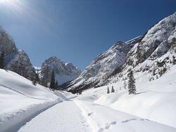 Escursione a Val Campo di Dentro - Rifugio Tre Scarperi