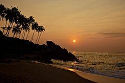 Tropenparadies