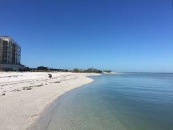 Island Ferry St. Pete Beach