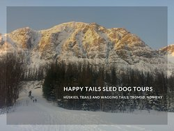 Happy Tails Norge