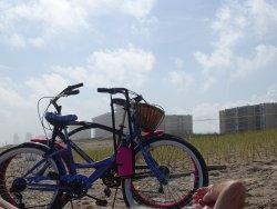 Beach Bikes on Padre