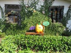 Formosan Golden Bat Home
