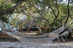 Tolle Insel zum Tauchen und Relaxen -Lodge etwas marode