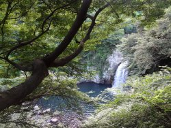天帝淵の滝