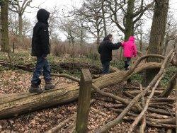 Parndon Wood Nature Reserve