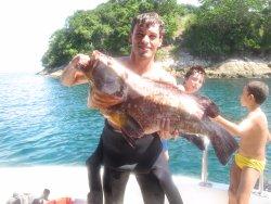 Acqua Roots Ilha Grande Tours